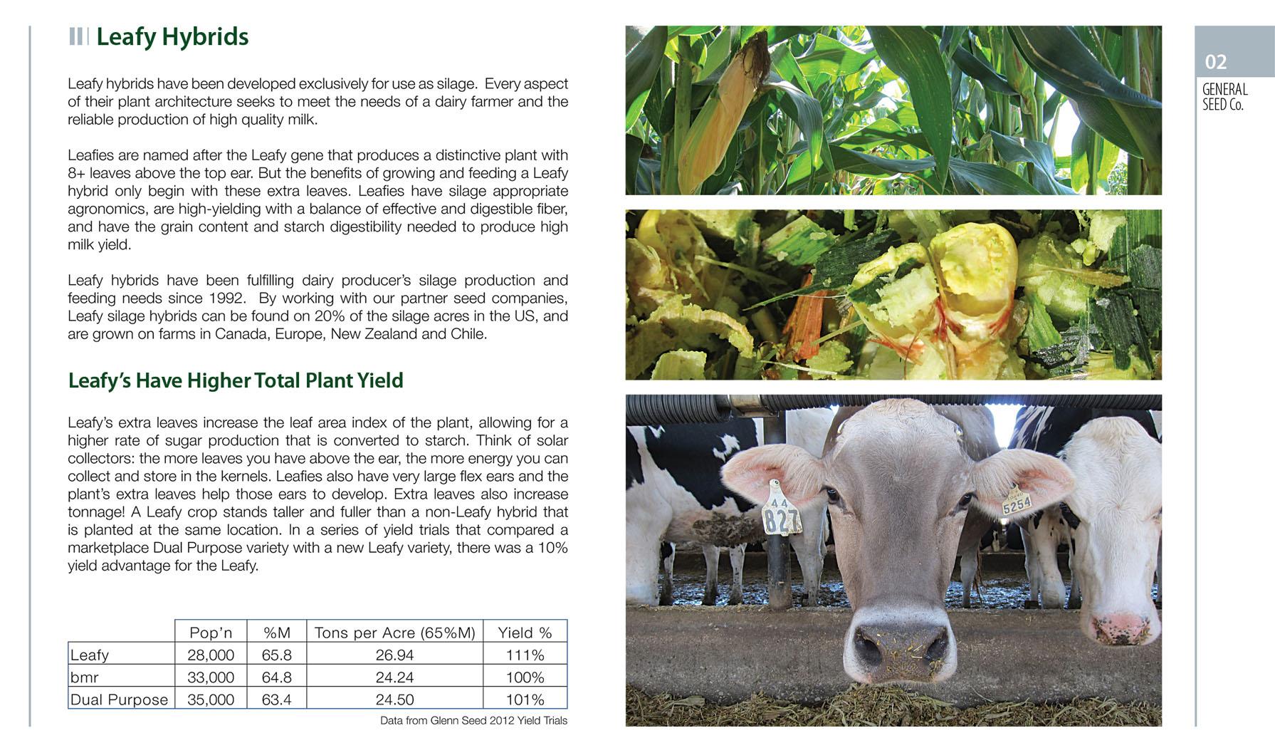 Leafy Hybrid general seed company