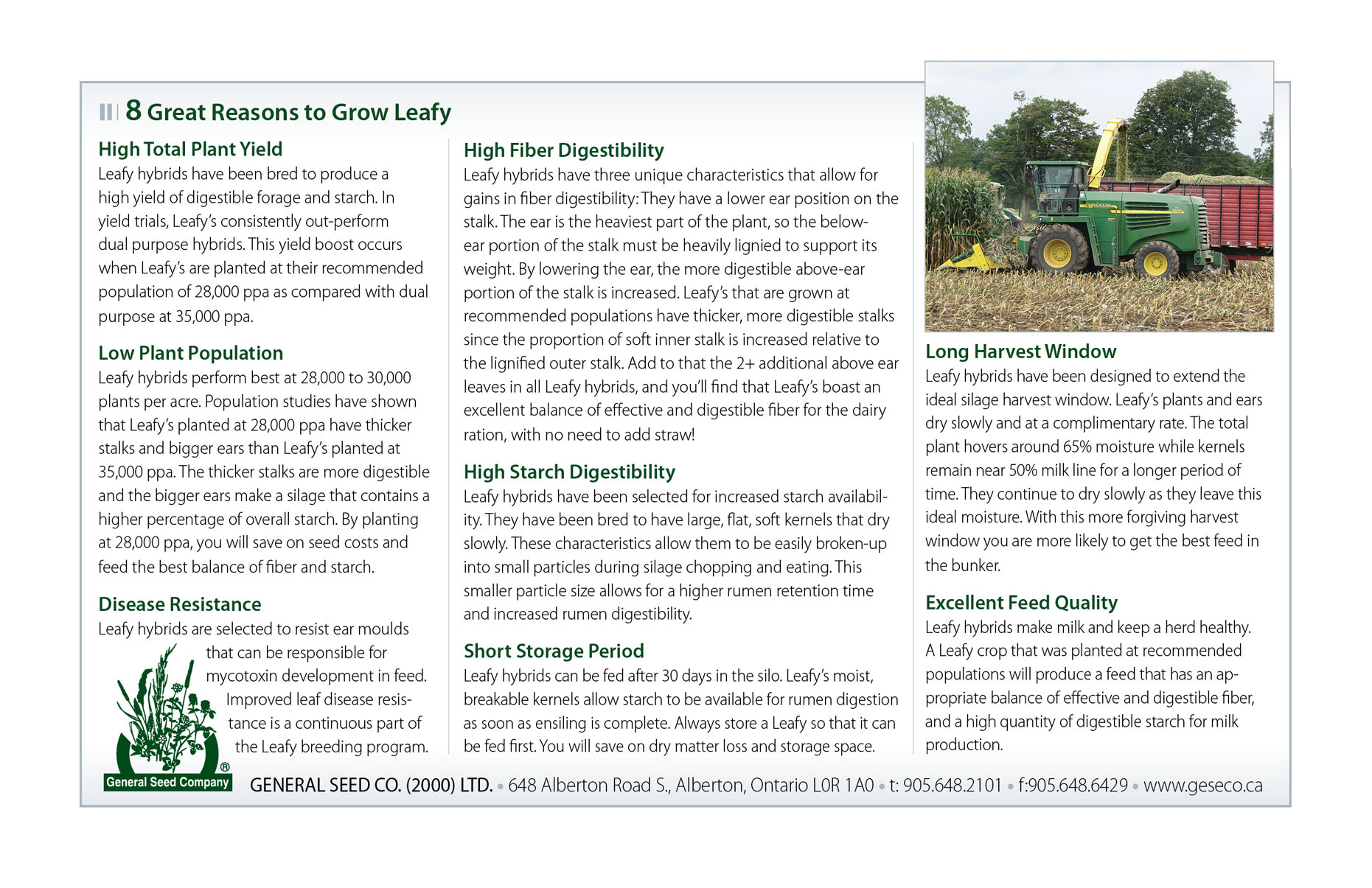Grow Leafy Corn general seed company